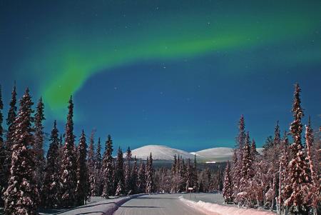 Nordlicht über den Fjälls