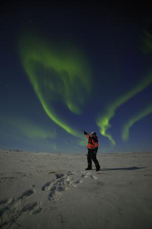 Zum Jahreswechsel ans Eismeer