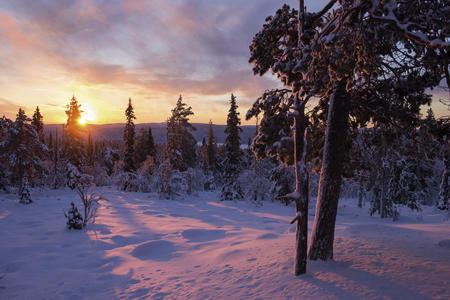 Polarlicht-Express Äkäslompolo