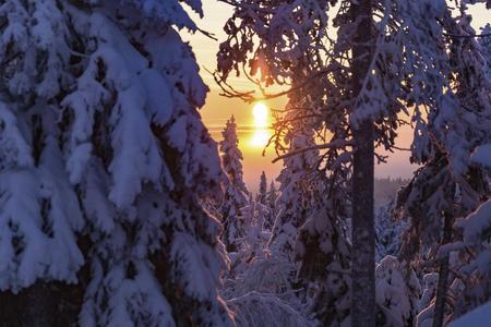 Bettenhüpfen zwischen Kuusamo und Rovaniemi