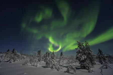 Polarlichter am Nachthimmel