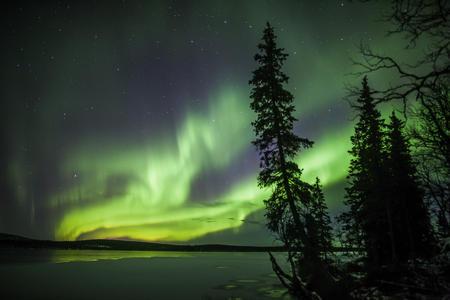 ein grünes Band am Nachthimmel